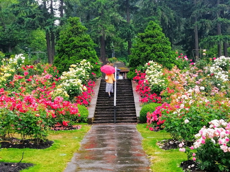 Foto von International Rose Test Garden